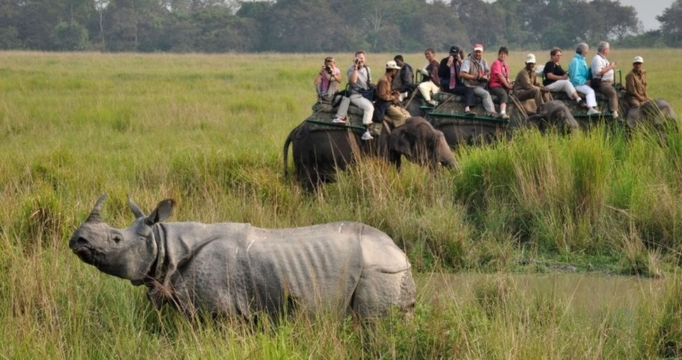 Kaziranga-National-Park-e1467990227700