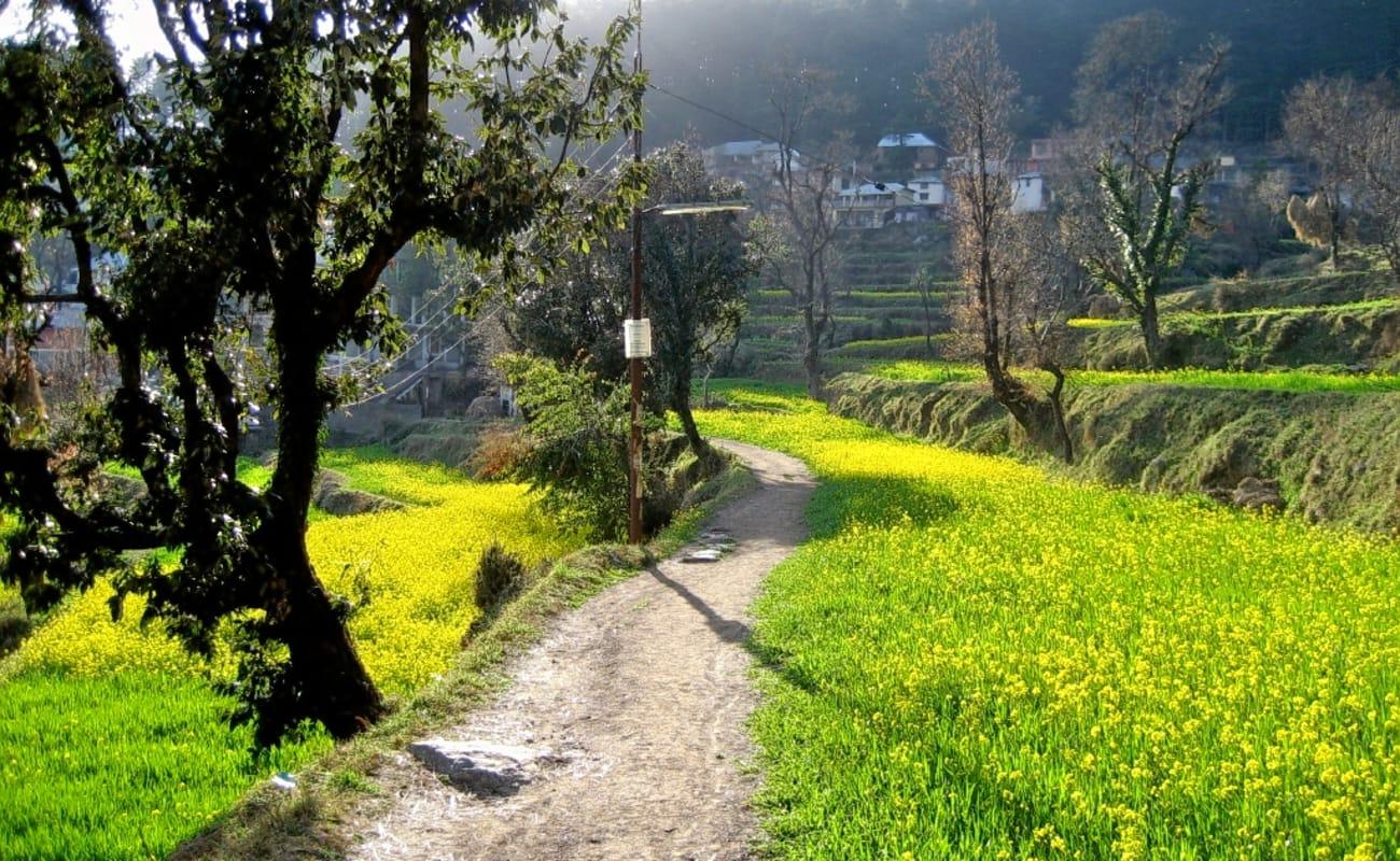 Dharamshala pic